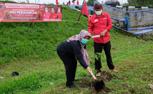 HUT PDIP ke 48, Iis Turniasih Bersama  DPC PDIP Purwakarta  Tanam Pohon di DAS Citarum