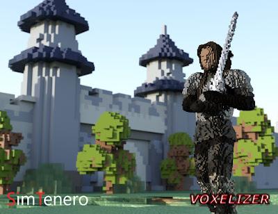 SimTenero Voxelizer