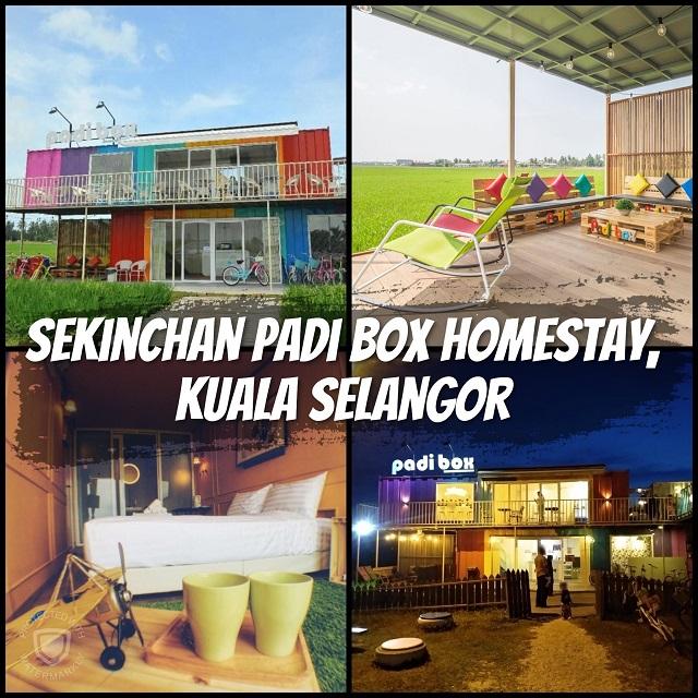 Sekinchan Padi Box