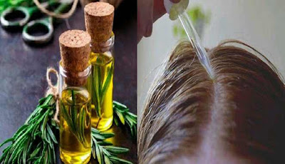 Minyak rosemary untuk rambut