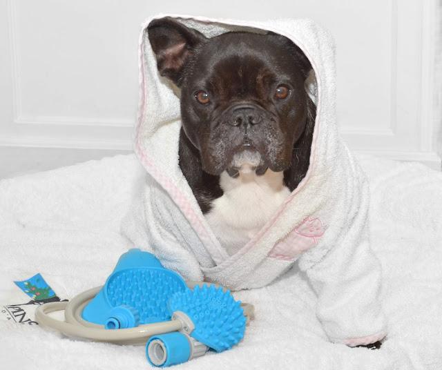 Pommeau accompagné du slow treater pour occuper le chien pendant la douche