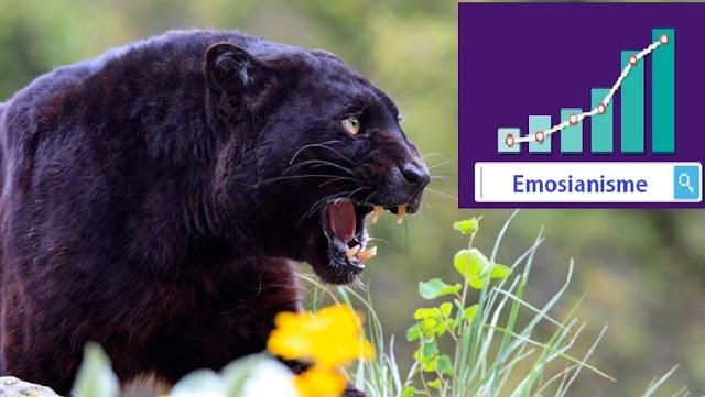 Gambar 15 Teknik SEO Ultimate Panther Bermanfaat Untuk Trafik