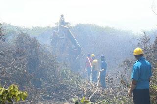 http://vnoticia.com.br/noticia/2000-incendio-atinge-vegetacao-de-restinga-na-praia-de-santa-clara