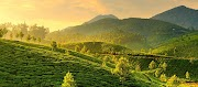 Munnar | Tourist Destination in Kerala