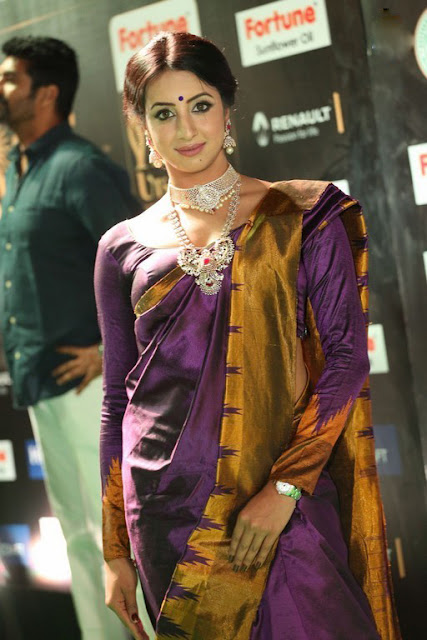 sanjana saree stills at iifa 2017