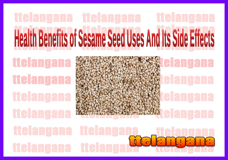 Health Benefits of Sesame Seed Uses And Its Side Effects