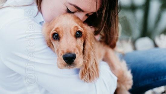mulher justica direito visitar cachorro marido