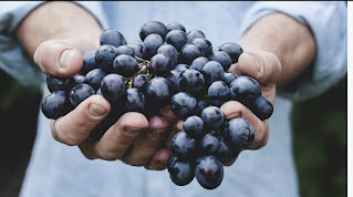 10 health benefits of grapes