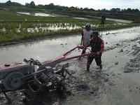 Walau Masih Berpakaian Loreng, Babinsa Koramil 16/PT Bantu Petani Bajak Sawah Dengan Traktor