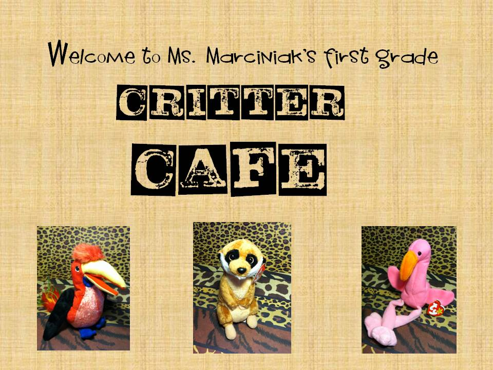 First Grade Critter Cafe': Song Debut:
