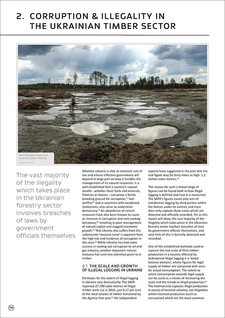 Зі звіту Earthsight: «Переважна більшість злочинів, які відбуваються в українському секторі лісового господарства, включає порушення закону з боку посадових осіб»