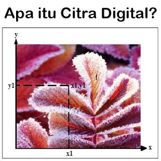 Pengertian Citra Digital