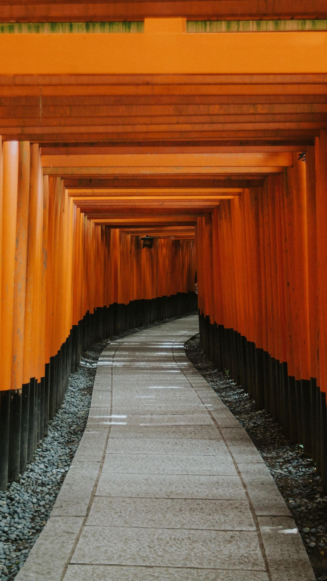 Wallpaper Tunnel, Way, Path