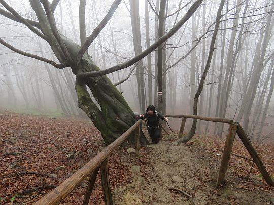 Barierki przydają się na stromiznach.