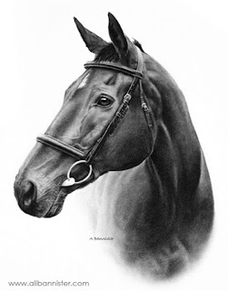 oleos-caballos-trazos-dibujos