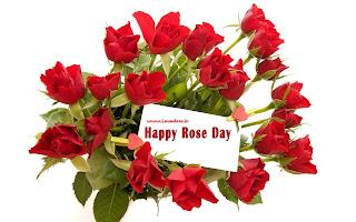 rose bunch hd image
