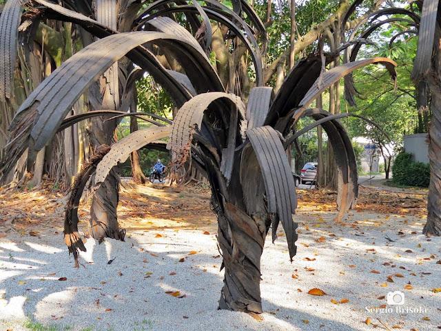 Close-up da Escultura Black Palm - Praça Adolpho Bloch - Jardim Paulista - São Paulo