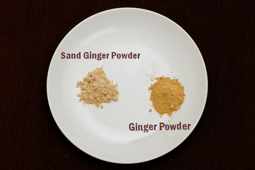 沙薑粉和薑粉 Sand Ginger Powder and Ginger Powder