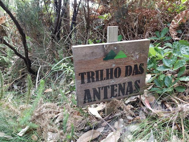 into de wild portugal