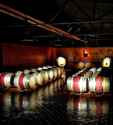 ipsus cantina vino