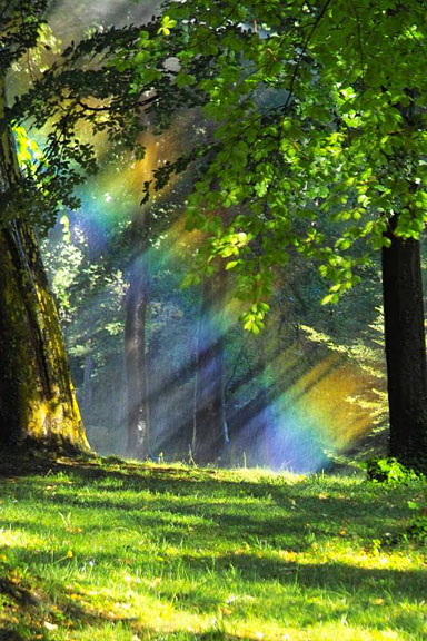 How god can shape a persons view of nature
