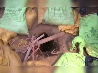 inngujarati,INN Gujarati,pakistan news