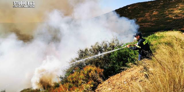 46 δασικές πυρκαγιές εκδηλώθηκαν χθες σε όλη τη χώρα