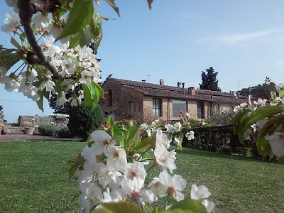 Countryside Villa with private panoramic garden and pool, Casa di campagna con giardino privato e piscina