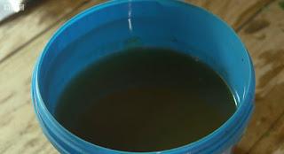 nettles soup