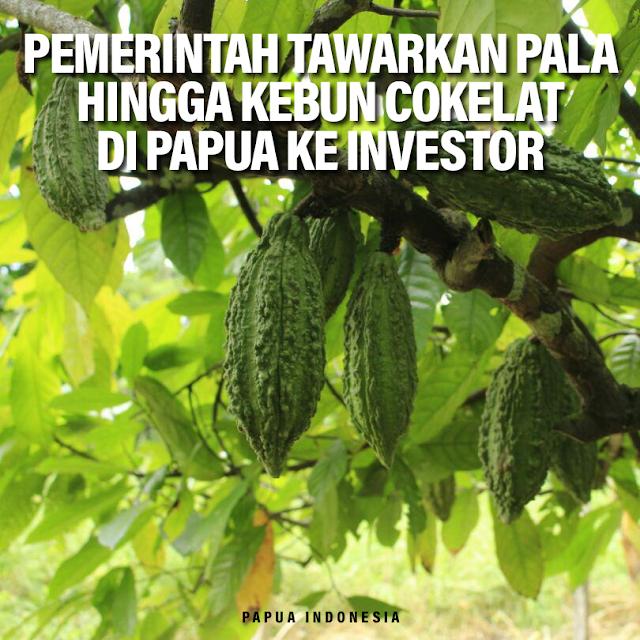 pemerintah-tawarkan-produk-investasi-hijau-kepada-investor