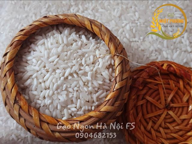 Gạo ngon Hà Nội