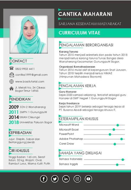 Contoh CV Lamaran Kerja dengan Word