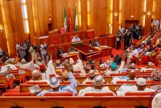 'Every Nigerian senator earns N29m m N3bn yearly' – Itse Sagay shocks