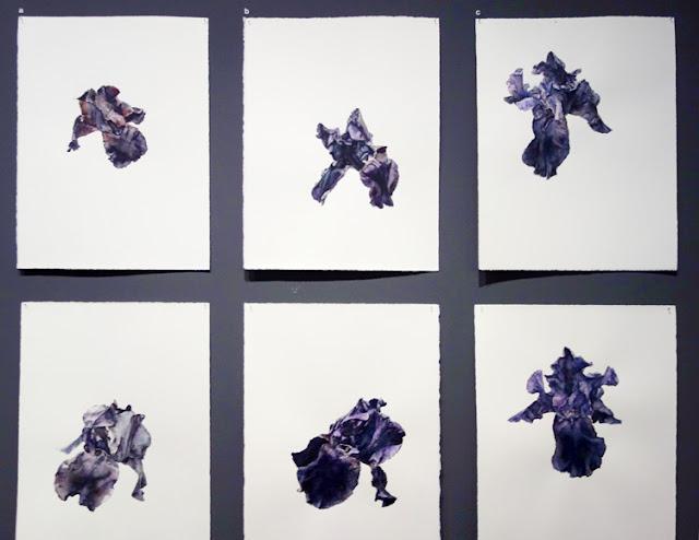 6 iris, Patrick Neu, exposition Jardins, Grand Palais