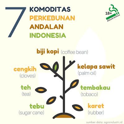 7 Komoditas Perkebunan Andalan Indonesia