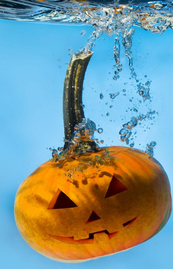 Tips & Tricks to preserve carved pumpkins and prevent rotting jack-o-lanterns #halloween #pumpkinhacks #pumpkintipscarving #jackolanternpreservationhacks #growingajeweledrose