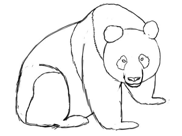 How To Draw A Panda Draw Central