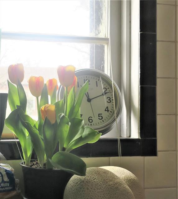 Morning light through kitchen window. Ferguson, Missouri. March 2018.