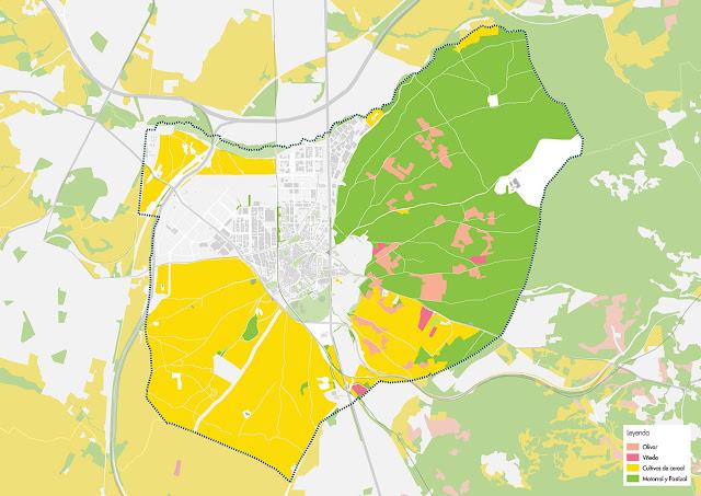 Pinto Plan Ciudad Analisis Medio Ambiente
