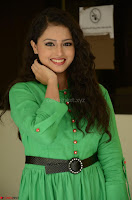 Geethanjali in Green Dress at Mixture Potlam Movie Pressmeet March 2017 049.JPG