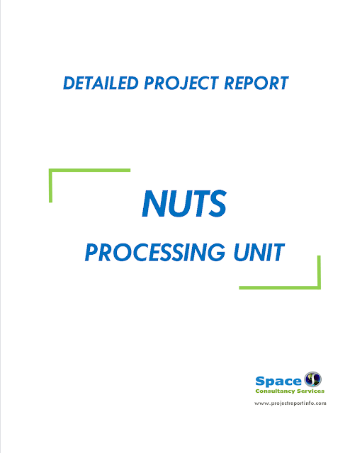 Project Report on Nuts Processing Unit