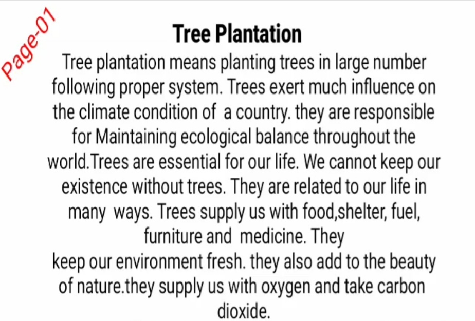Tree Plantation Paragraph | Tree Plantation প্যারাগ্রাফ
