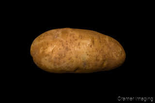Product photograph of one single Idaho Russet potato on a black background taken by Cramer Imaging
