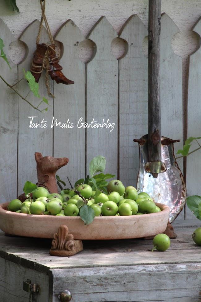 Schale mit grünen Äpfeln auf Pflatztisch Dekoration Sommer