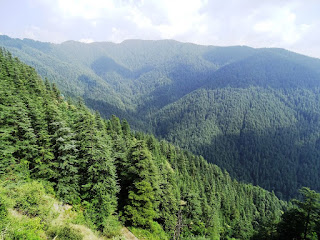 View From Shimla-Rampur Road