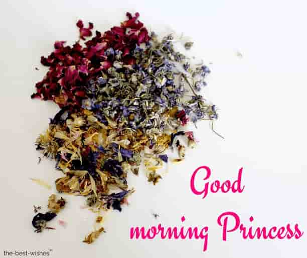 good morning images of princess