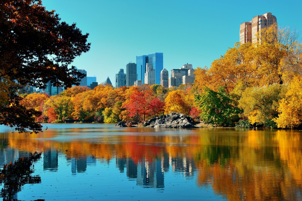central park events and central park things to do will make you crazy