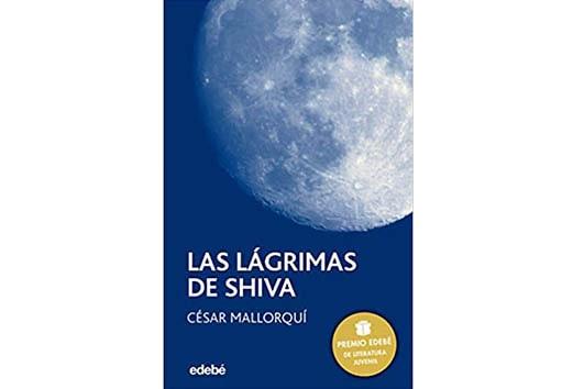 imagen de la luna, con fondo azul