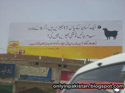 Funny Pakistani shops