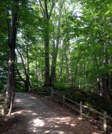Barrhaven Trail